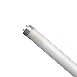 Lâmpada Fluorescente Tubular 4W Luz Branca Foxlux