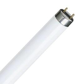 Lâmpada Fluorescente Tubular T8 16W Luz Branco Neutro Philips